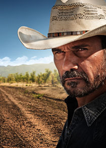 In Mystery Road as Detective Jay Swan