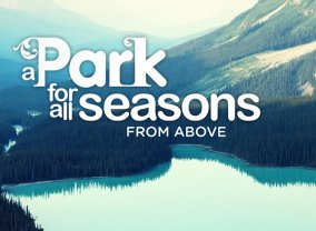 A Park for All Seasons From Above