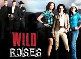 The Wild Roses Tv Show Season 1 Episodes List Next Episode