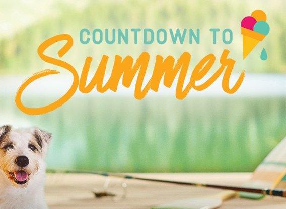 Hallmark Countdown to Summer TV Show Air Dates & Track Episodes