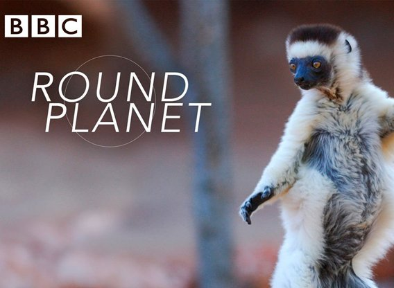 Round Planet Tv Show Air Dates Track Episodes Next Episode Find out where to watch round planet streaming online. round planet tv show air dates track