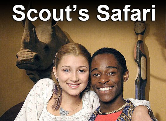 Scout's Safari