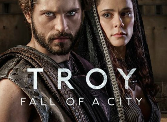 Image result for troy fall of a city
